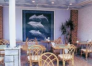 イルカ2.jpgのサムネール画像